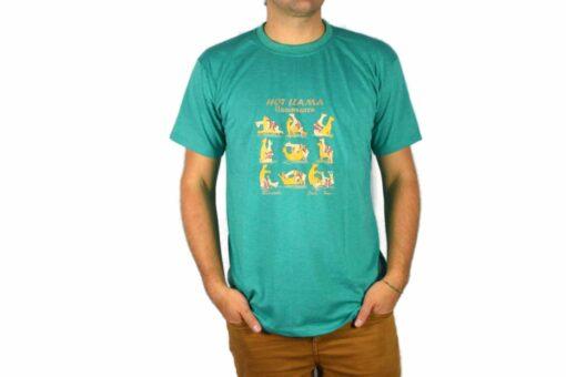 Shirt Llamasutra türkis